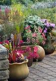 Κήπος πεζουλιών με τα φυτά γλαστρών στοκ εικόνα με δικαίωμα ελεύθερης χρήσης