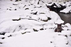 Κήπος που καλύπτεται ιαπωνικός στο χιόνι Στοκ Εικόνες
