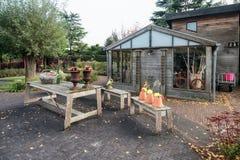 Κήπος που ρίχνεται σε έναν κήπο στα χρώματα φθινοπώρου και το σύνολο των συμπαθητικών διακοσμήσεων στοκ φωτογραφία με δικαίωμα ελεύθερης χρήσης