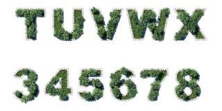 Κήπος που τίθεται πράσινος με το γκρι που κυβίζει τα σύνορα Στοκ φωτογραφία με δικαίωμα ελεύθερης χρήσης