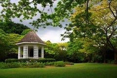 κήπος πράσινος Στοκ Εικόνες