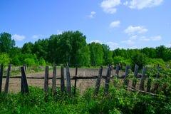 Κήπος στα ξύλα Στοκ φωτογραφία με δικαίωμα ελεύθερης χρήσης