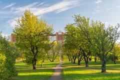 Κήπος στην πόλη της Αγία Πετρούπολης Στοκ Εικόνα