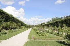 Κήπος στο Εθνικό Μουσείο της φυσικής ιστορίας στοκ εικόνες με δικαίωμα ελεύθερης χρήσης