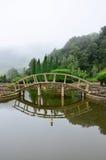 Κήπος στο εθνικό πάρκο Doi Inthanon Στοκ φωτογραφία με δικαίωμα ελεύθερης χρήσης