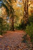 Κήπος στο εθνικό πάρκο Peneda Geres στοκ φωτογραφίες