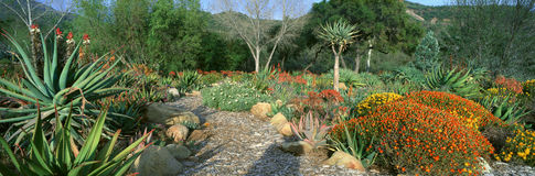 Κήπος στο κέντρο για τις γήινες ανησυχίες στοκ φωτογραφία με δικαίωμα ελεύθερης χρήσης