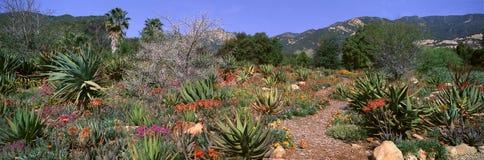 Κήπος στο κέντρο για τις γήινες ανησυχίες, Ojai, Καλιφόρνια στοκ φωτογραφίες