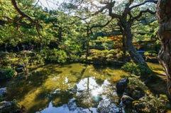 Κήπος της Ιαπωνίας Στοκ Εικόνες
