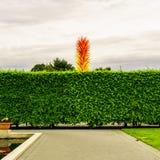 Κήπος της Νέας Υόρκης Στοκ Εικόνες