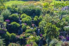 κήπος της Ντάρμσταντ Στοκ φωτογραφία με δικαίωμα ελεύθερης χρήσης