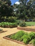 Κήπος της Ουάσιγκτον στοκ εικόνες