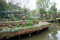 Κήπος της Mae Fah Luang, DoiTung Στοκ εικόνες με δικαίωμα ελεύθερης χρήσης