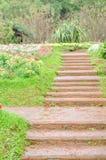Κήπος τοπίων διάβασης πεζών και ζωηρόχρωμα λουλούδια Στοκ Φωτογραφία