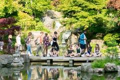 Κήπος του Κιότο στοκ φωτογραφία