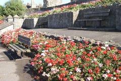 Κήπος του Ρότσεστερ Castle, Αγγλία Στοκ εικόνες με δικαίωμα ελεύθερης χρήσης
