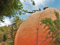 Κήπος φαντασίας παιδιών ` s στο βοτανικό κήπο του Αλμπικέρκη BioPark Στοκ Φωτογραφίες