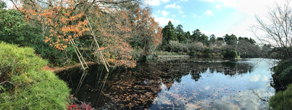 Κήπος φθινοπώρου με τη λίμνη Στοκ εικόνα με δικαίωμα ελεύθερης χρήσης
