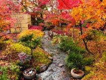 Κήπος φθινοπώρου σε Eikando, Κιότο Στοκ Εικόνες