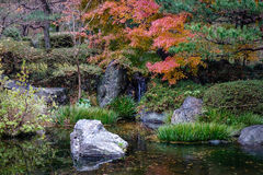 Κήπος φθινοπώρου σε Kanazawa, Ιαπωνία Στοκ Εικόνες