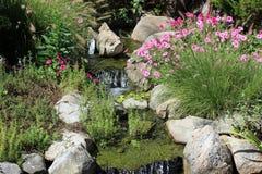 Κήπος ψαριών και λουλουδιών Στοκ φωτογραφία με δικαίωμα ελεύθερης χρήσης