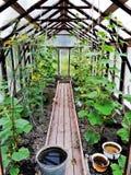 κήπος 2 στοκ φωτογραφία