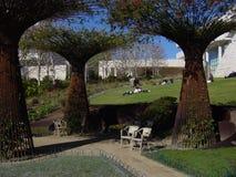 κήπος Στοκ Φωτογραφίες