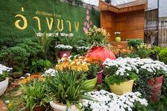 Κήπος ANG Khang Doi Στοκ φωτογραφίες με δικαίωμα ελεύθερης χρήσης