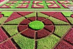Κήπος botanico Jardim - διάσημο μέρος των κήπων, νησί της Μαδέρας στοκ φωτογραφία με δικαίωμα ελεύθερης χρήσης