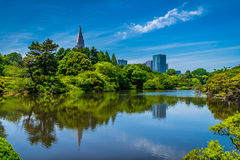 Κήπος Gyoen Shinjuku Στοκ Εικόνα