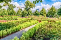 Κήπος Idillic μέσα στο πάρκο του Γκόρκυ, Μόσχα, Ρωσία στοκ εικόνες