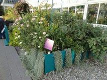 Κήπος Monets στοκ εικόνες με δικαίωμα ελεύθερης χρήσης