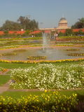 Κήπος Mugal Στοκ Εικόνες