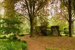 Κήπος Nympha στοκ εικόνες με δικαίωμα ελεύθερης χρήσης