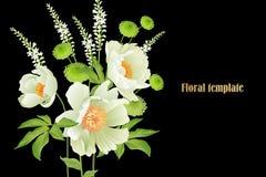 Κήπος peonies στο μαύρο υπόβαθρο η μαύρη κάρτα χρωμάτισε το floral λευκό ίριδων λουλουδιών απεικόνιση αποθεμάτων