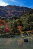 Κήπος Tenryu-tenryu-ji το φθινόπωρο Στοκ εικόνα με δικαίωμα ελεύθερης χρήσης