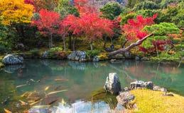 Κήπος Tenryu-tenryu-ji το φθινόπωρο, Arashiyama, Κιότο, Ιαπωνία Στοκ Φωτογραφίες