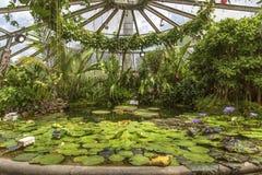 Κήπος tete δ ή Parc de Λα Tete δ ` ή στη Λυών, Γαλλία κήπος που ονομάζεται από το χρυσό κεφάλι για το tresor Πάρκο του χρυσού κεφ στοκ φωτογραφία