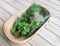 Κήπος trug των φρέσκων οργανικών χορταριών στην ξύλινη γέφυρα: φρέσκα κρεμμύδια, μέντα, στοκ φωτογραφία με δικαίωμα ελεύθερης χρήσης