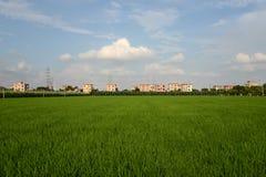 Κίνα αγροτική Στοκ εικόνες με δικαίωμα ελεύθερης χρήσης