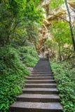 Κίνα, εθνικό πάρκο Zhangjiajie, σκαλοπάτια επάνω Στοκ εικόνες με δικαίωμα ελεύθερης χρήσης