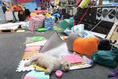 Κίνημα ομπρελών στο Χονγκ Κονγκ Στοκ φωτογραφία με δικαίωμα ελεύθερης χρήσης
