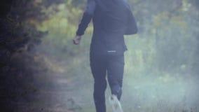 κίνηση αργή Άτομο που τρέχει μακριά στο ομιχλώδες δάσος που δραπετεύει το πρόβλημα Εξερεύνηση των μυστήριων βαθιών ξύλων Μόνος δρ απόθεμα βίντεο