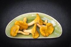 Κίτρινα άγρια δασικά μεγάλα chanterelles στο πιάτο στο μαύρο υπόβαθρο Στοκ Εικόνα