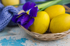 Κίτρινα αυγά Πάσχας στο καλάθι και την μπλε ίριδα Στοκ Φωτογραφίες