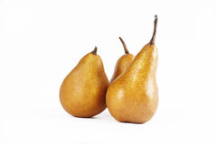 Κίτρινα αχλάδια Στοκ φωτογραφία με δικαίωμα ελεύθερης χρήσης