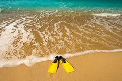 Κίτρινα βατραχοπέδιλα στην παραλία άμμου στοκ εικόνες