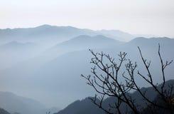 Κίτρινα βουνά το πρωί, Huangshan, Κίνα στοκ εικόνα