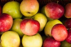 Κίτρινα και κόκκινα μήλα Στοκ φωτογραφία με δικαίωμα ελεύθερης χρήσης