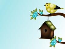 Κίτρινα και μαύρα πουλί και υπόβαθρο Birdhouse Στοκ Φωτογραφίες